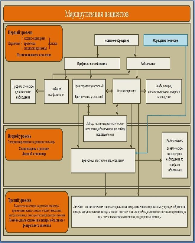 Маршрутизация пациентов » краевое государственное ...